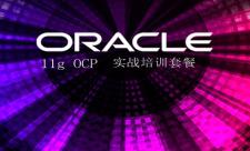 Oracle 11gOCP 考试实战培训视频课程专题