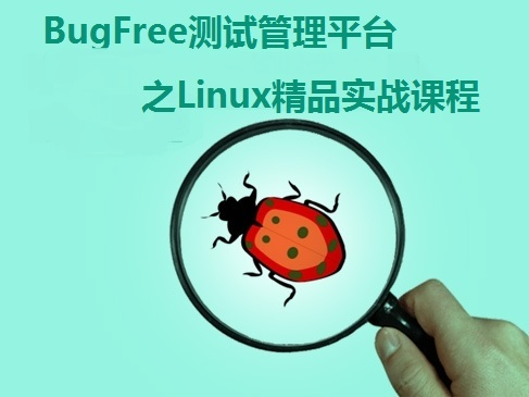 BugFree软件测试工具之Linux实战课程