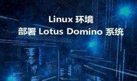Linux环境下部署Lotus Domino 系统视频课程