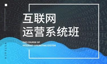 互联网运营系统班--产品经理与新媒体营销视频课程