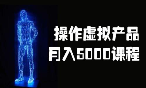 操作虚拟产品数据库营销月入8000系列实战视频课程