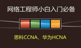 网络工程师小白入门系列视频课程02--【思科CCNA、华为HCNA等网络工程师认证】