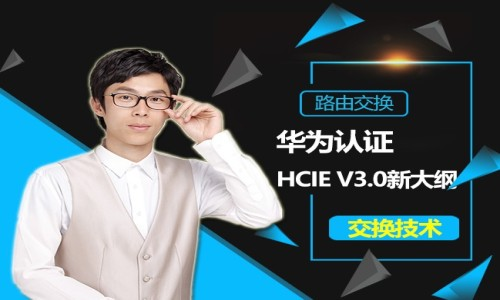 华为HCNP-HCIE v3.0交换技术