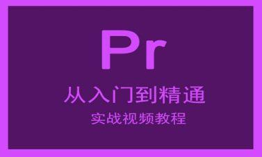 Premiere从入门到精通实战视频课程(剪辑技巧+制作经验+实例应用)