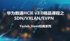 Yeslab_Hans华为数通HCNA/HCNP/HCIE经典系列IE06SDNVXLAN/EPN