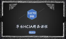 华为HCIA(HCNA)精品课程-Wakin出品