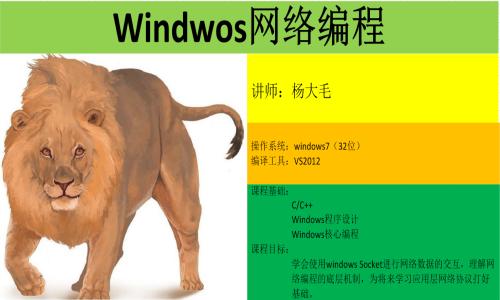 Windows 网络编程