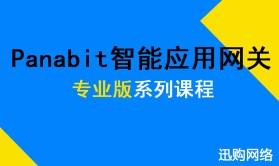 Panabit智能应用网关专业版--网关接入组网