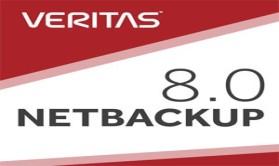 企业实战:Veritas NBU 8.0备份与还原(上)