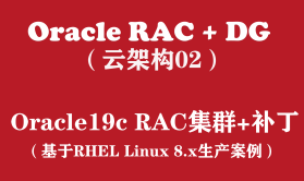 Oracle RAC+DG生产实战(2):Oracle19c RAC for Linux8安装+补丁