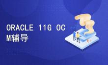 ORACLE 11G OCM考试辅导精讲